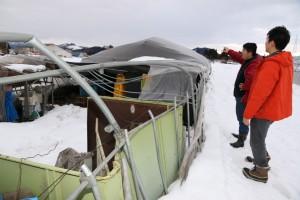 記録的な大雪で、ハウスが倒壊するなどの被害が出た