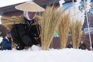 その年の豊凶を占う小正月の伝統行事「雪中田植」